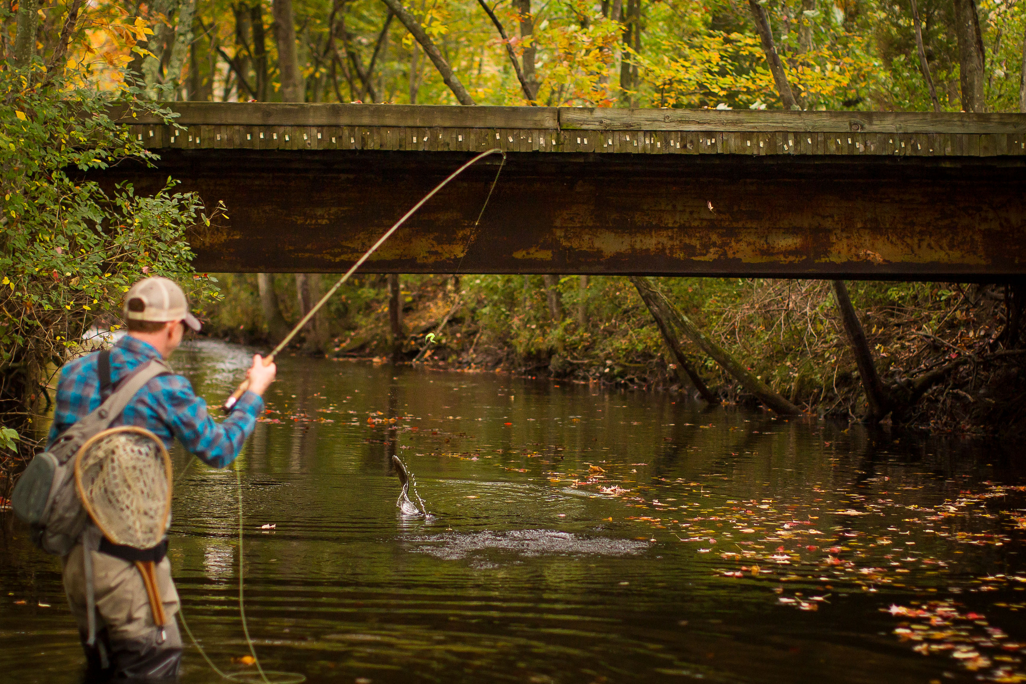 Northwest new jersey ben turpin for Nj fly fishing